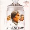 Cheeni Kum(2007)#302